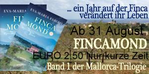 160829Fincamond-für-Website